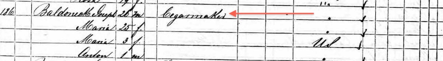 Bartunek 1870 Federal Census